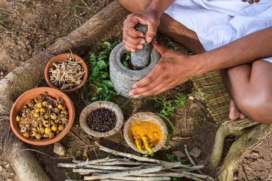 ayurveda-ingredients